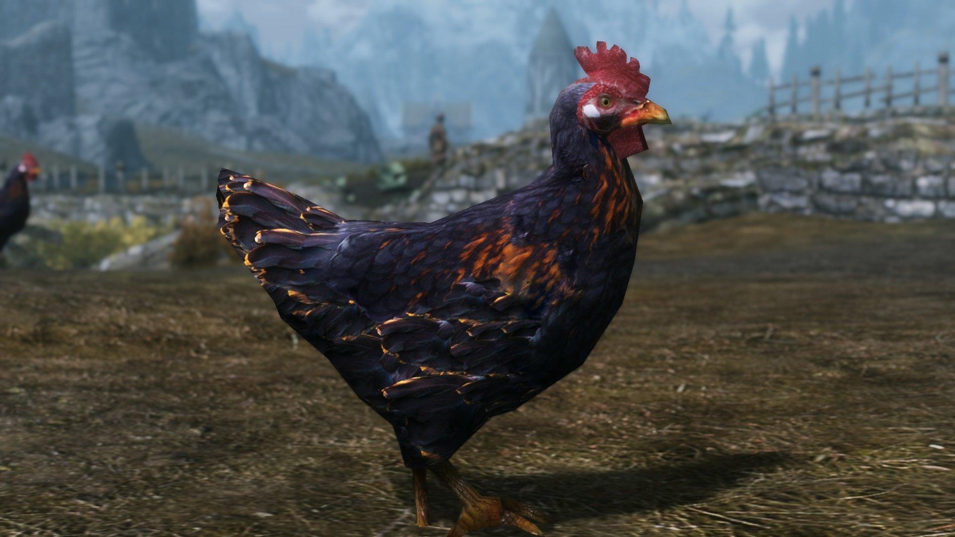 74084 8 1457445952 chicken HD