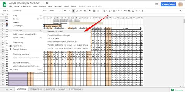 google docs export Usuwamy ochronę dokumentów w MS Office