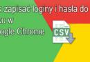 Jak zapisać loginy i hasła do pliku w Google Chrome