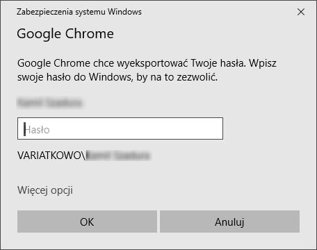 systemzabezpieczenwindows Jak zapisać loginy i hasła do pliku w Google Chrome