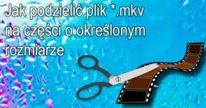 mkv 300x158 Dodajemy dodatkową ścieżkę dźwiękową do filmu *.mkv