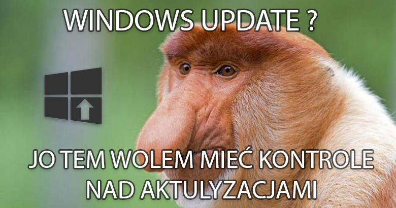 Blog  3 Wyłączamy usługę aktualizacji Windows 10