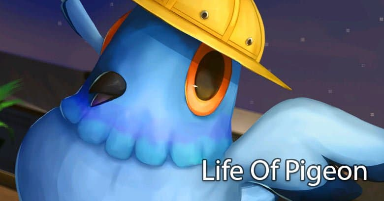 Blog  2 Life Of Pigeon