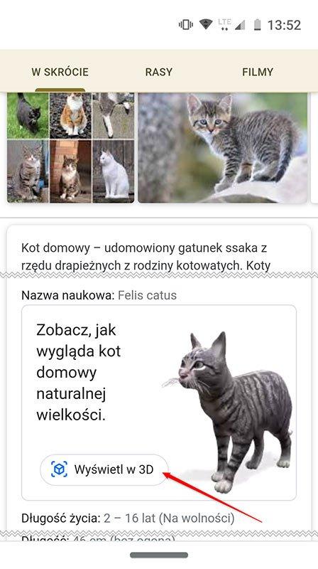 Bez nazwy 1 Jak oglądać zwierzęta w AR za pomocą wyszukiwarki Google