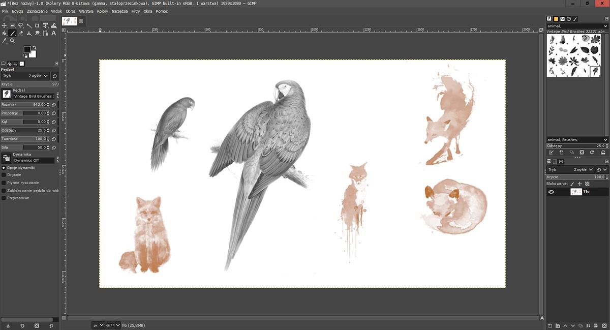 2021 01 11 08h06 03 Jak zaimportować pędzle z Adobe Photoshop do GIMP ?