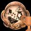 trhhc Trofea i osiągnięcia: Nioh 2