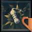 ehaaw Trofea i osiągnięcia: Tom Clancy's Rainbow Six Siege