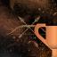 42 Trofea i osiągnięcia: Far Cry 4